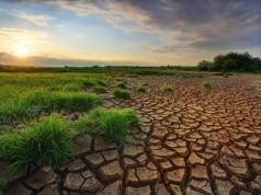 Paris'teki devletler İklim Değişikliği Sözleşmesi için anlaşmaya vardı