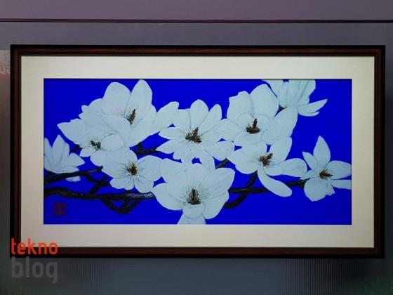 lg-w7-oled-tv-on-inceleme-00027-560x420