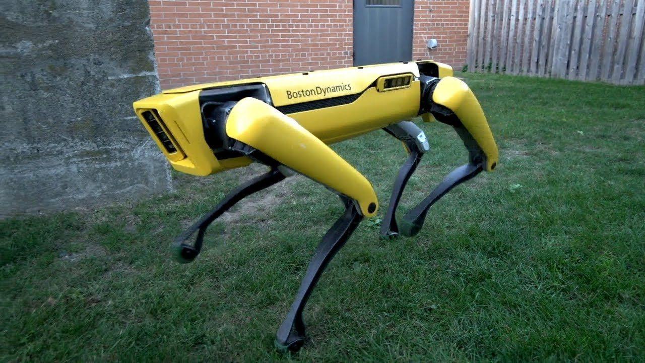 Boston Dynamics SpotMini'nin yeni versiyonunu göstermeye hazırlanıyor – Video