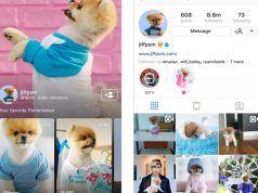Instagram IGTV ile yeni bir video deneyimi sunacak